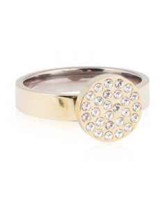 Brillance Titanium Ring fra Blomdahl